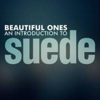 Beautiful Ones: An Introduction To Suede