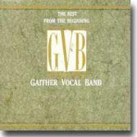 The Best From The Beginning Gvb