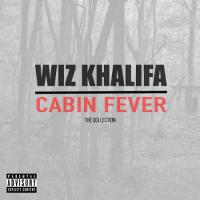 Cabin Fever: The Collection