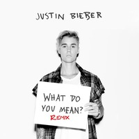 What Do You Mean? (Remixes)