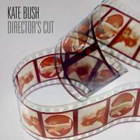 Directors Cut (Collectors Edition) (Cd3)